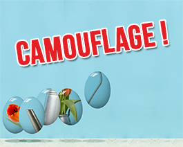 carte virtuelle paques : Camouflage