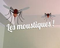 carte virtuelle femme : Les moustiques
