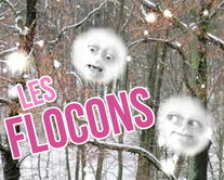 carte virtuelle forets : Les flocons