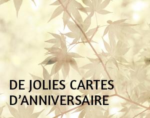 Jolie Carte Anniversaire Notre Selection De Jolies Cartes Anniversaire Originales A Personnaliser